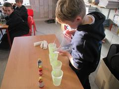 Student science experiments