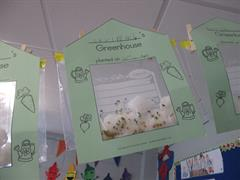 Our Mini Greenhouses