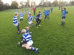 Saturday Rugby