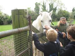 Clonfert Farm