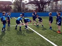 School Rugby Festival