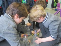 Science Week - Oceans